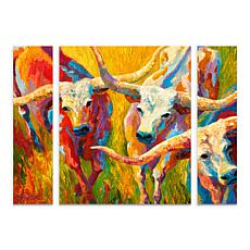 "Rose ""Dance of the Longhorns"" Panel Art - 24"" x 32"""