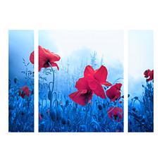 "Sainte-Laudy ""Jam for Poppies"" Panel Art - 30"" x 41"""