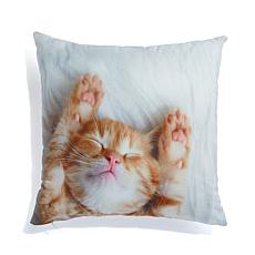 Soft & Cozy Digital Print Plush Pillow