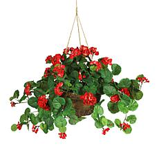 South Street Loft Geranium Hanging Basket