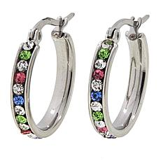 Stately Steel Rainbow-Colored Crystal Hugger Hoop Earrings