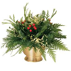Van Zyverden Live Fresh Cut Pacific Northwest Holly Centerpiece