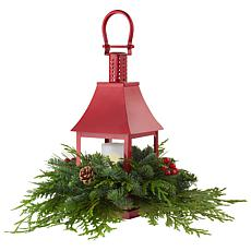 Van Zyverden Live Fresh Cut Pacific Northwest LED Lantern Centerpiece