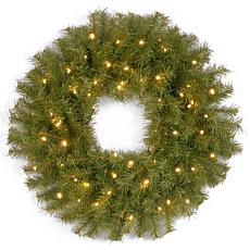 "Winter Lane 24"" Battery-Operated Norwood Fir Wreath"