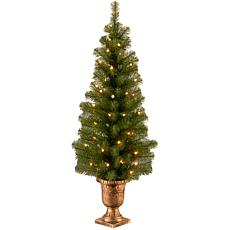 Winter Lane 4' Montclair Spruce Entrance Tree w/Lights