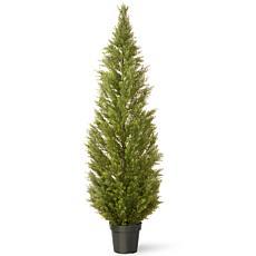 Winter Lane 6' Artificial Topiary Arborvitae Tree in Base