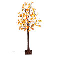 Winter Lane 6' Electric LED Lighted Indoor/Outdoor Tree - Maple Leaf