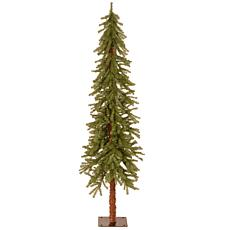 Winter Lane 6' Hickory Cedar  Tree