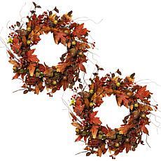 "Winter Lane Set of 2 24"" Harvest Acorn Wreaths"