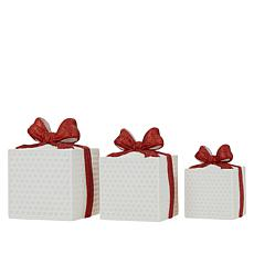 Winter Lane Set of 3 Porcelain Gifts with 6-Hour Timers