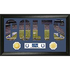 Word Art Minted Coin Panoramic Photo-Indianapolis Colts