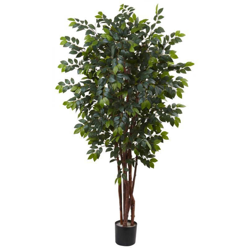 7 Ft. Sakaki Silk Tree