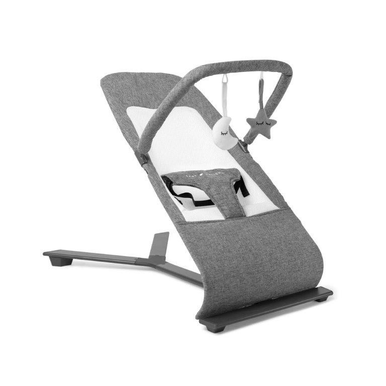 Baby Delight® Go With Me™ Alpine Deluxe Portable Bouncer - Charcoal