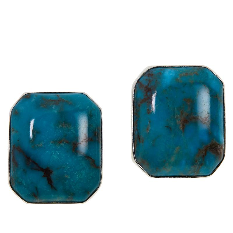 Jay King Sterling Silver Spider Web Turquoise Stud Earrings