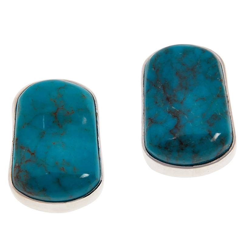 Jay King Sterling Silver Turquoise Hill Turquoise Earrings
