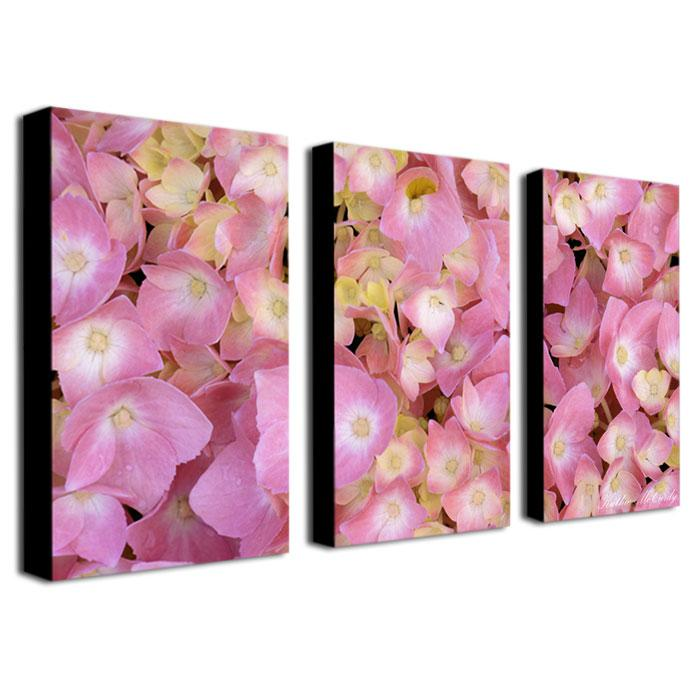 "Kathier McCurdy ""Pink Hydrangea"" Giclée-Print Set"