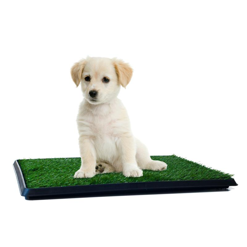 Pet Adobe Puppy Faux Grass Potty Trainer Mat - Small