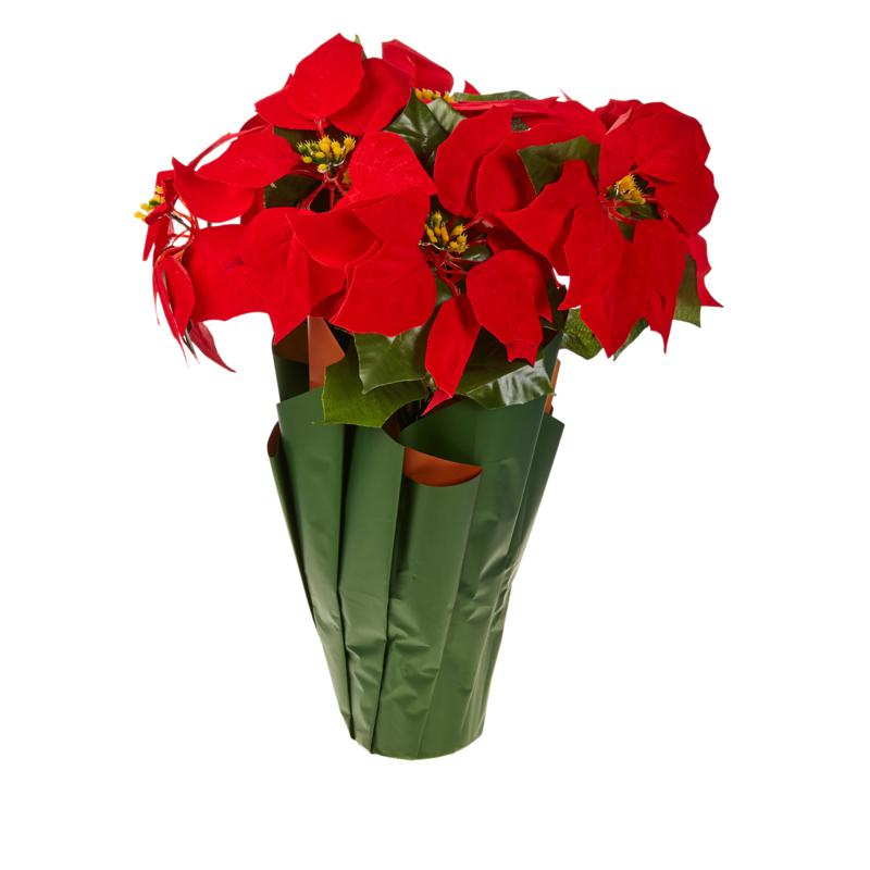 """Winter Lane Battery-Operated 18"""" Poinsettia with Lights and Timer"""